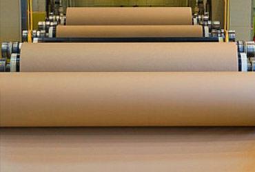 Industry Spotlight: Pulp & Paper
